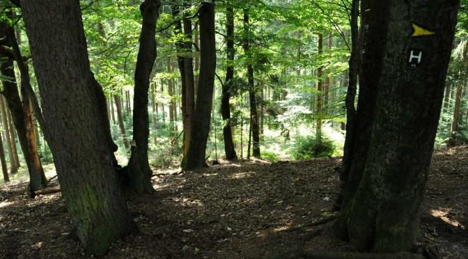 Regionalpark Rosengarten: Route 1