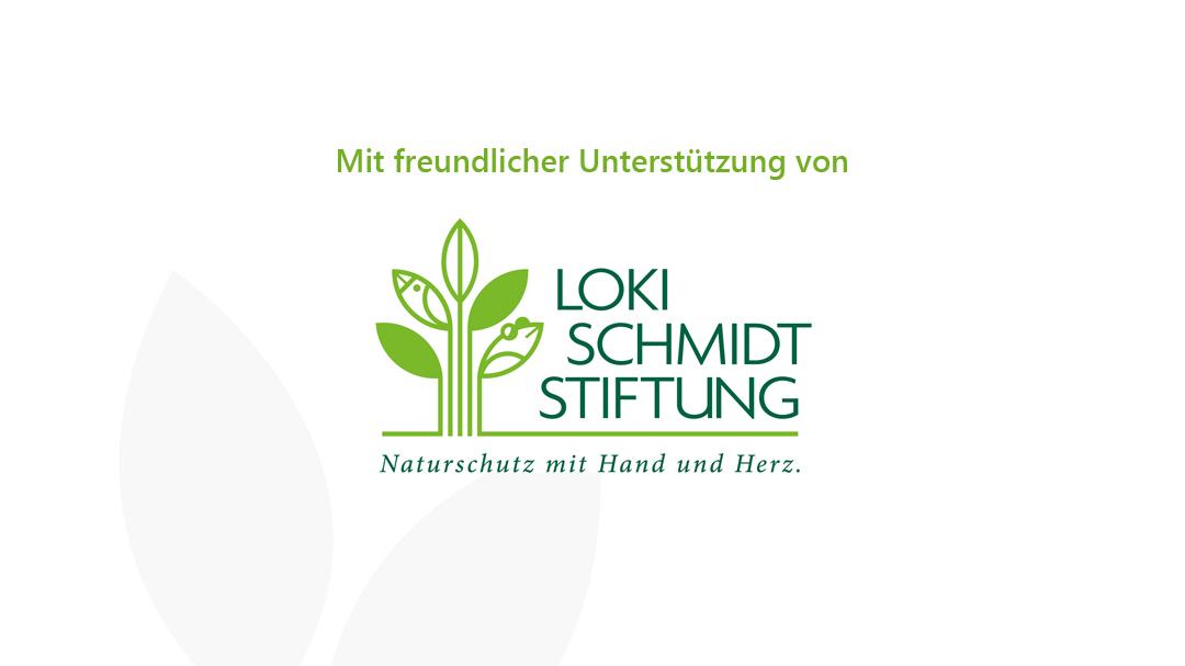 Logo der Loki Schmidt Stiftung