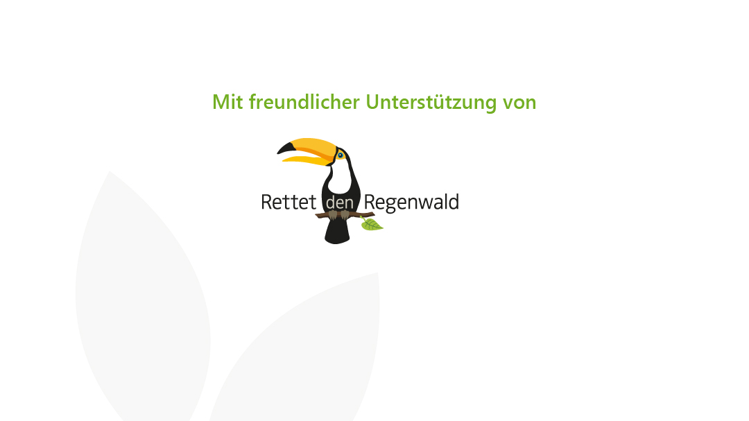 Logo rettet den Regenwald e.V.